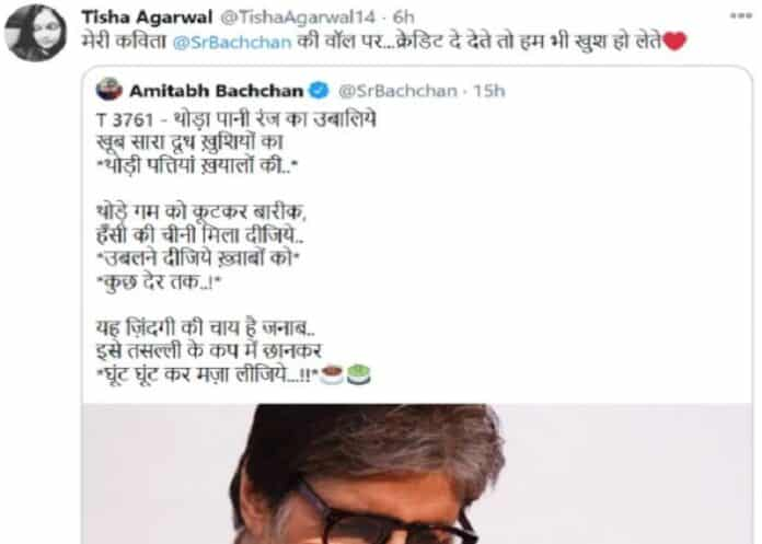 Tisha Aggarwal accused Amitabh Bachchan of stealing poetry